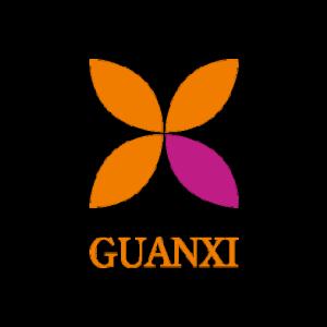 logo_guanxi